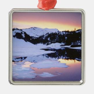 USA, California, Sierra Nevada Mountains. The Metal Ornament