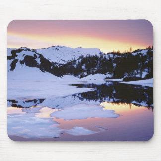 USA, California, Sierra Nevada Mountains. The Mouse Pad