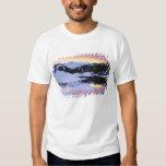 USA, California, Sierra Nevada Mountains. The Tshirt