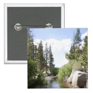 USA, California, Sonora Pass, Landscape with Button