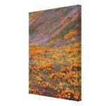 USA, California, Tehachapi Mountains, 2 Canvas Prints
