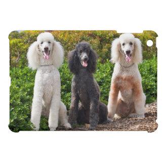 USA, California. Three Standard Poodles Sitting 2 Case For The iPad Mini