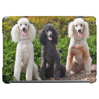 USA, California. Three Standard Poodles Sitting 2 iPad Air Case
