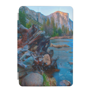 USA, California. Tree Roots In Merced River iPad Mini Cover