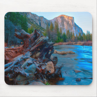 USA, California. Tree Roots In Merced River Mouse Pad