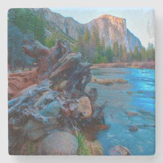 USA, California. Tree Roots In Merced River Stone Coaster