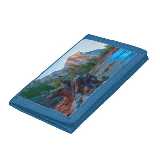 USA, California. Tree Roots In Merced River Tri-fold Wallets