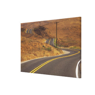 USA, California. Winding country road. Credit Stretched Canvas Print