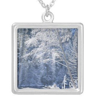 USA, California, Yosemite National Park, 2 Silver Plated Necklace