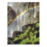 USA, California, Yosemite National Park. A Postcard