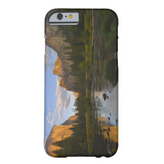USA, California, Yosemite National Park, Merced Barely There iPhone 6 Case