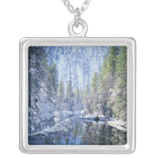 USA, California, Yosemite National Park, Silver Plated Necklace