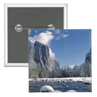 USA, California, Yosemite NP. The Merced River, Button