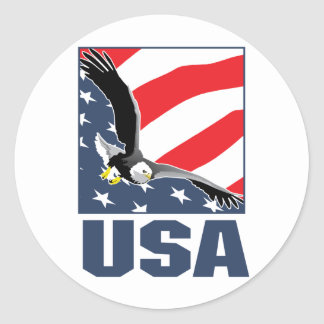 usa classic round sticker