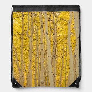 USA, Colorado. Aspens In Gunnison National Drawstring Backpack