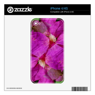 USA, Colorado, Boulder. Clematis flower montage Skins For The iPhone 4S