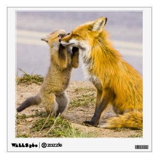 USA, Colorado, Breckenridge. Red fox mother 2 Wall Decal