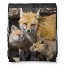 USA, Colorado, Breckenridge. Red fox mother 4 Drawstring Backpack