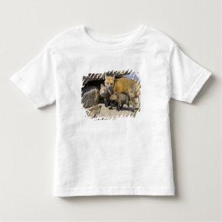 USA, Colorado, Breckenridge. Red fox mother 4 Toddler T-shirt