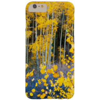 USA, Colorado. Bright Yellow Aspens In Rockies 2 Barely There iPhone 6 Plus Case