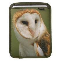 USA, Colorado, Broomfield. Barn owl Sleeve For iPads