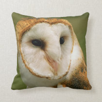 USA, Colorado, Broomfield. Barn owl Throw Pillow