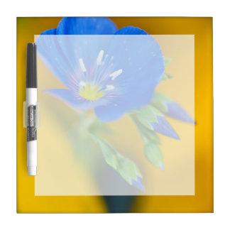 USA, Colorado. Close-up of cranesbill geranium Dry Erase Board
