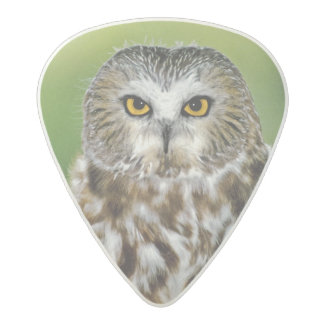 USA, Colorado. Close-up of northern saw-whet owl Acetal Guitar Pick