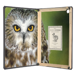 USA Colorado Close-up of northern saw-whet owl iPad Air Case