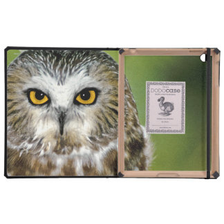 USA Colorado Close-up of northern saw-whet owl Case For iPad