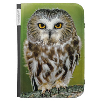 USA Colorado Close-up of northern saw-whet owl Kindle Keyboard Covers