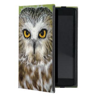 USA Colorado Close-up of northern saw-whet owl iPad Mini Covers