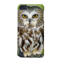 USA, Colorado. Close-up of northern saw-whet owl iPod Touch 5G Cover