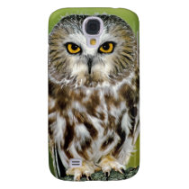 USA, Colorado. Close-up of northern saw-whet owl Samsung Galaxy S4 Case
