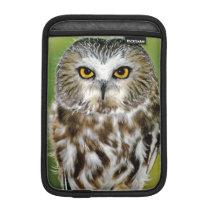 USA, Colorado. Close-up of northern saw-whet owl Sleeve For iPad Mini
