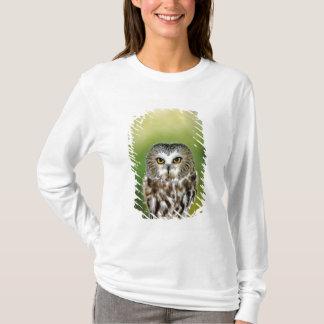 USA, Colorado. Close-up of northern saw-whet owl T-Shirt