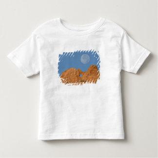 USA, Colorado, Colorado Springs, Garden of the 2 T-shirt