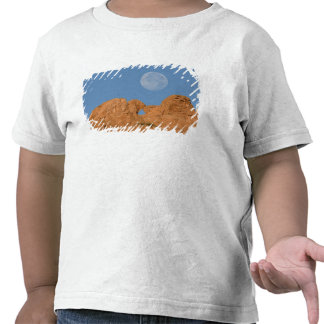 USA, Colorado, Colorado Springs, Garden of the 2 Tee Shirts