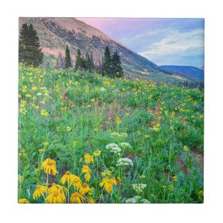 USA, Colorado, Crested Butte. Landscape 2 Ceramic Tile