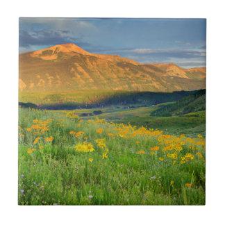 USA, Colorado, Crested Butte. Landscape 3 Tile