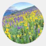USA, Colorado, Crested Butte. Landscape Classic Round Sticker