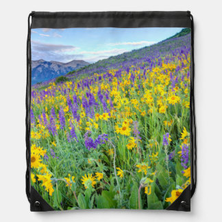 USA, Colorado, Crested Butte. Landscape Drawstring Backpack