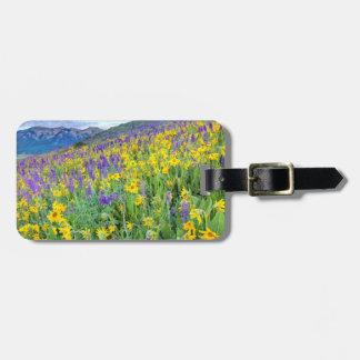 USA, Colorado, Crested Butte. Landscape Luggage Tag
