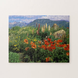 USA, Colorado, Crested Butte. Poppies and lupine Jigsaw Puzzle