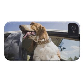 USA, Colorado, dog looking through car window 2 iPhone 4 Case