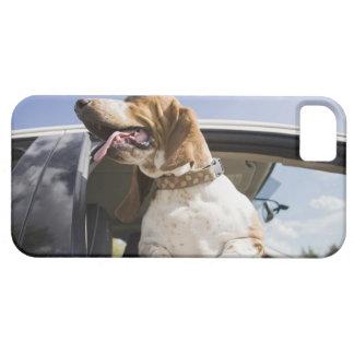 USA, Colorado, dog looking through car window 2 iPhone SE/5/5s Case