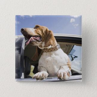 USA, Colorado, dog looking through car window 2 Pinback Button