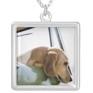 USA, Colorado, dog looking through car window Silver Plated Necklace
