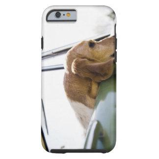 USA, Colorado, dog looking through car window Tough iPhone 6 Case