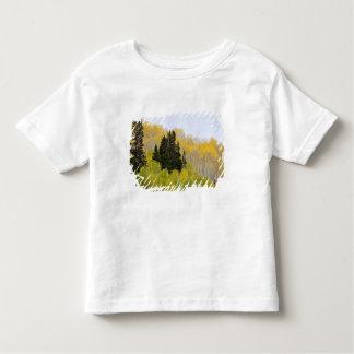 USA, Colorado, Gunnison National Forest, along 2 Toddler T-shirt